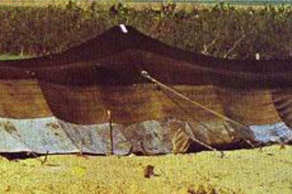 #44  Bethel – Abram's Tent