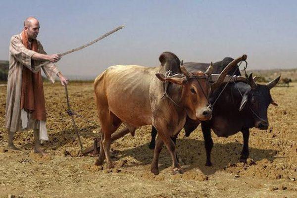 #73 – God Chooses a Farmer as the New Master Prophet