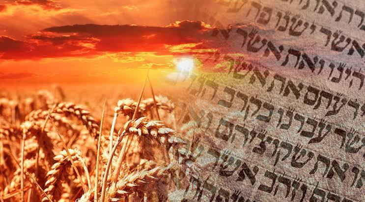 Happy Shavuot/ Pentecost